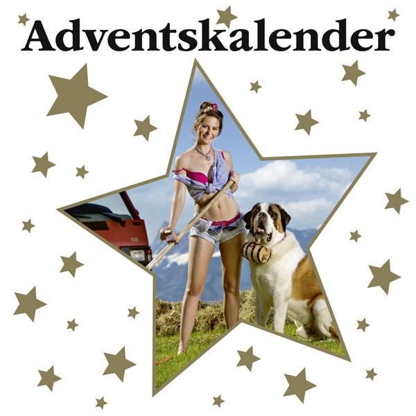 Adventskalender_CH_DE_AT_15a19a21c4061d